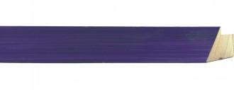 Violet on Purple Large Angle