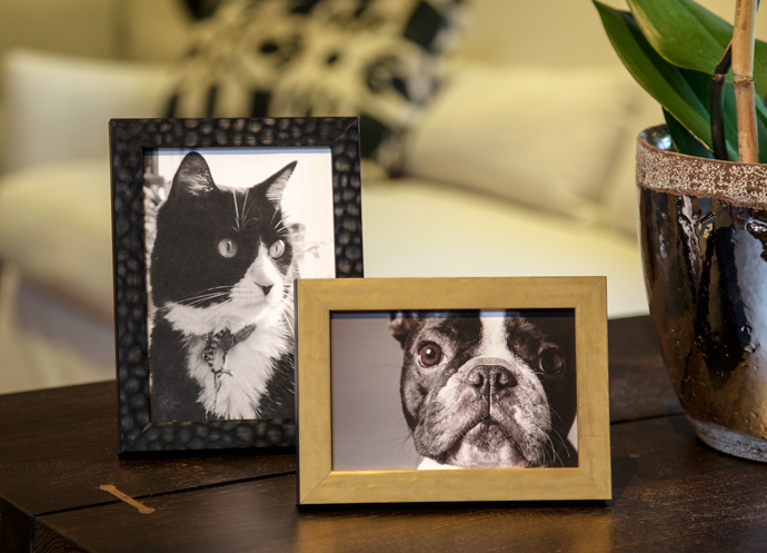 The Bella Blog - New Photo Frames for 2015 | Bella Moulding